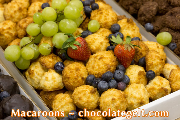 "Passover 2018 chocolate covered macaroons in bulk, disposable seder plates discount packs and more"" border="