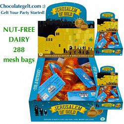 Wholesale Nut Free Certified Milk Chocolate Coins (288 bags)