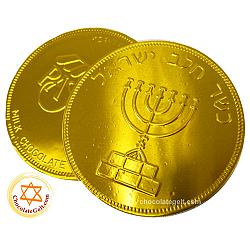 Large Chocolate Coin MILK Nut-Free Kosher (Discount Case of 48)